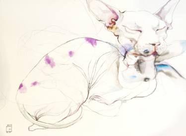 cat rabbiting1
