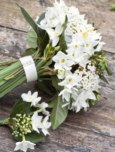 White narcissus bridal bouquet
