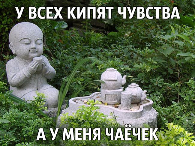 как шутят буддисты