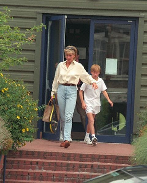 734 Best Diana And Her Family Images On Pinterest