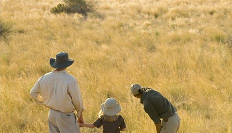 African safaris for families