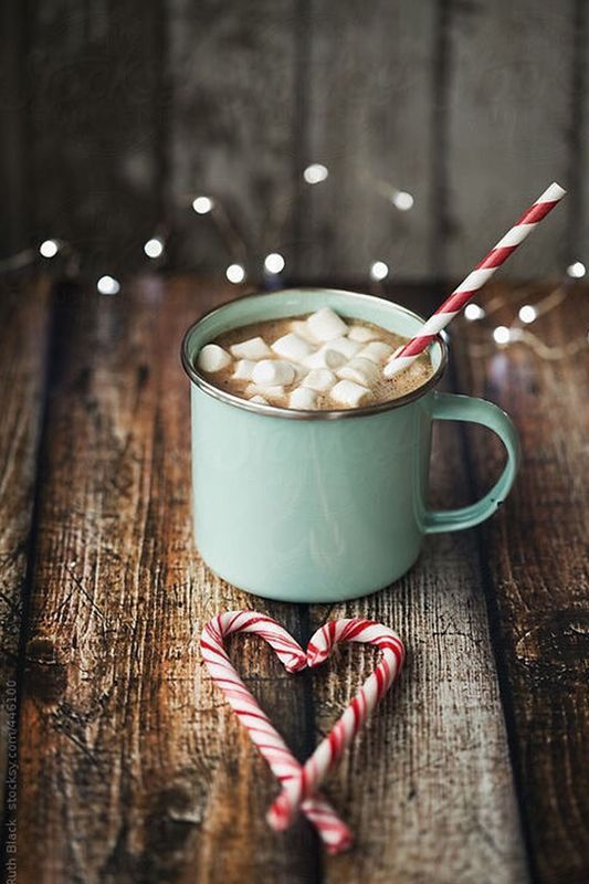 Hot chocolate and marshmallows complete with candy canes for a Christmas finish.