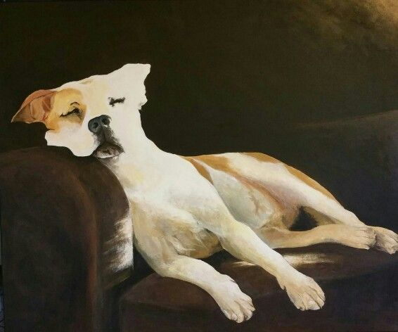 Golden dog 50x60cm Acrylic on canvas