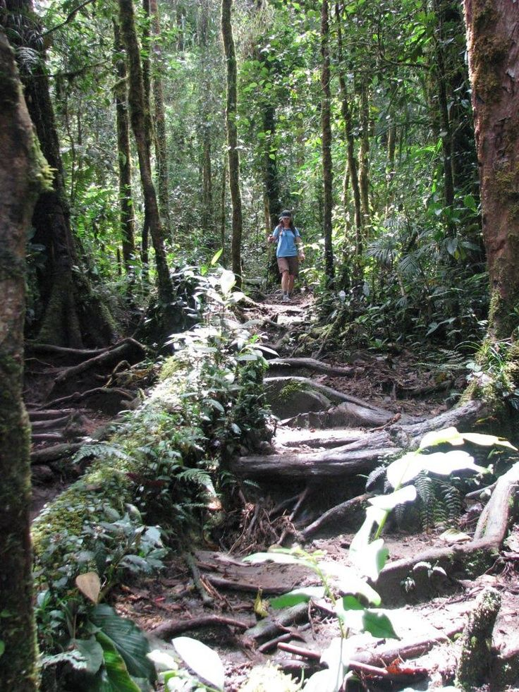 One with nature on the Kokoda Track
