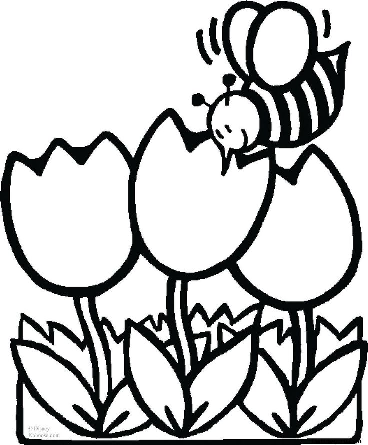 free printable spring coloring pages for use in your classroom and home from primarygames