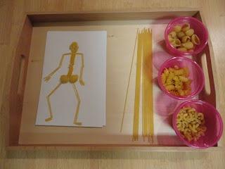 Discovery Days and Montessori Moments: Montessori Monday~ Human Body Week 3!