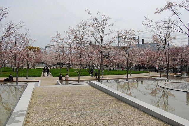 建築家・安藤忠雄氏によるランドスケープアーキテクチャー、さくら広場を22枚の写真で紹介。「平成桜の通り抜け」などに見られる桜への思い入れの強さと、安藤作品と水との関わりを小規模ながら体感できるスペース。