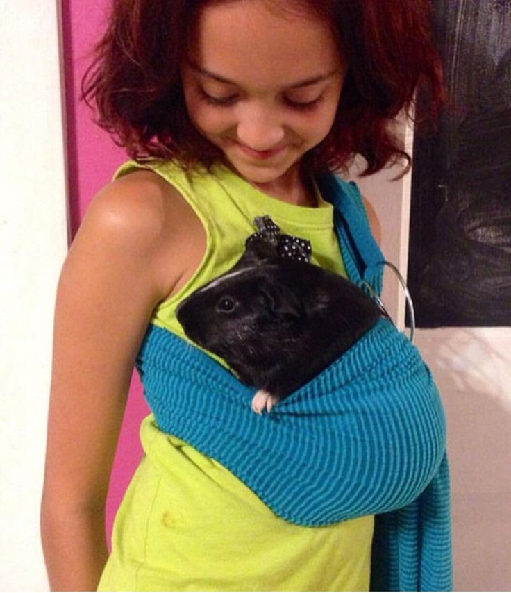 Turquoise adjustable guinea pig sling small pet carrier by BangBang714 on Etsy https://www.etsy.com/listing/497759834/turquoise-adjustable-guinea-pig-sling