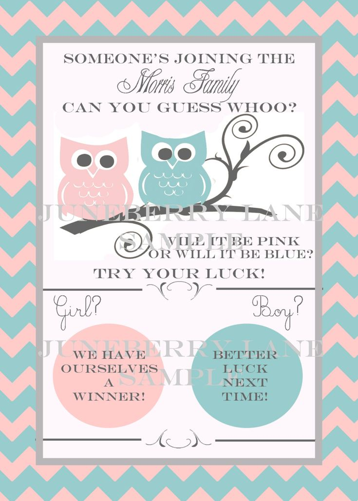 Owl Baby Gender Reveal Scratch-off Announcements from Juneberry Lane