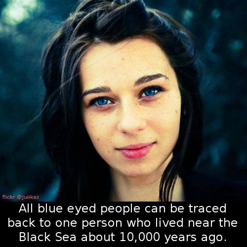People with Black Eyes Facts | Did You Know That Blue-Eyed People Can All Be Traced Back To …. i think this is amazing!!