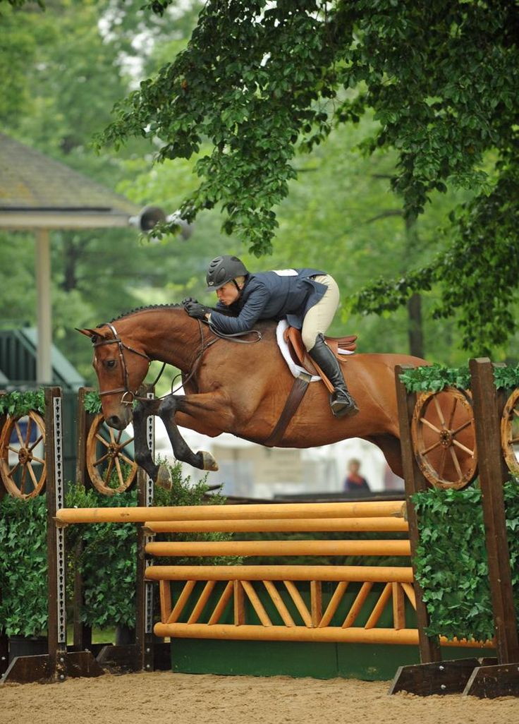 Virginia Fout And Classified | The Chronicle of the Horse