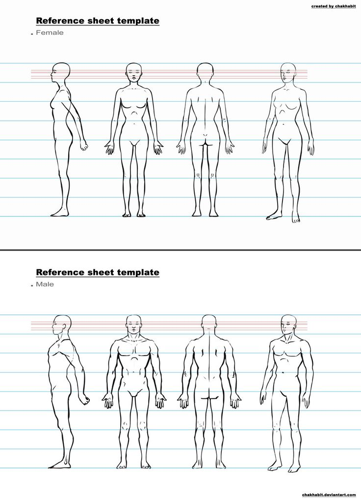 character design sheet template - Google Search Anatomy and - reference sheet template
