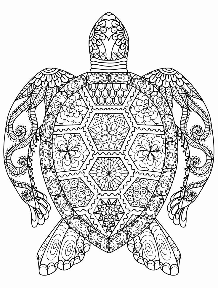 Pin On Best Printable Coloring Pages
