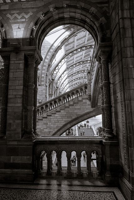 Stair of knowledge, Natural History museum, London, UK