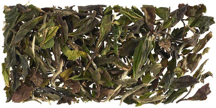 Té blanco Pai Mu Tan, crece en las montañas de Fujian China) y se elabora de forma artesanal, con el brote sin abrir y las dos primeras hojas. Su infusión es de color ocre dorado, de aroma fresco y floral y textura aterciopelada.