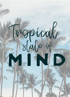 Tropical State of Mind quotes, beach quotes, sunset quotes, sunset sayings, beach saying, sunset beach quotes, surfer quote, surfer saying, beach quotes inspirational, ocean saying, ocean quote, summer quote, summer saying, beach phrase, surf phrase, palm