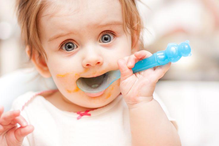 Rezepte für Babys | Mit einem halben Jahr sind Babys bereit für mehr als nur Milch - jetzt ist endlich Brei-Zeit! Wir haben für Dich eine tolle Auswahl zusammengestellt! Alle Rezepte werden Schritt für Schritt erklärt. Wetten, dass da selbst Mama und Papa das Wasser im Mund zusammen läuft?