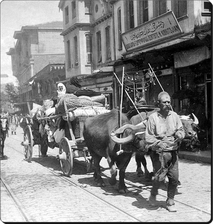 Eski İstanbul sokaklarında bir manda arabası - 1900'ler