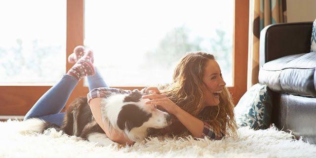 Pet Sitting: 50 μυστικά που το κατοικίδιο ζώο σας δεν θα σας πε...