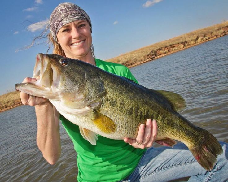 110 best images about braggin 39 board winners on pinterest for Bass fishing texas
