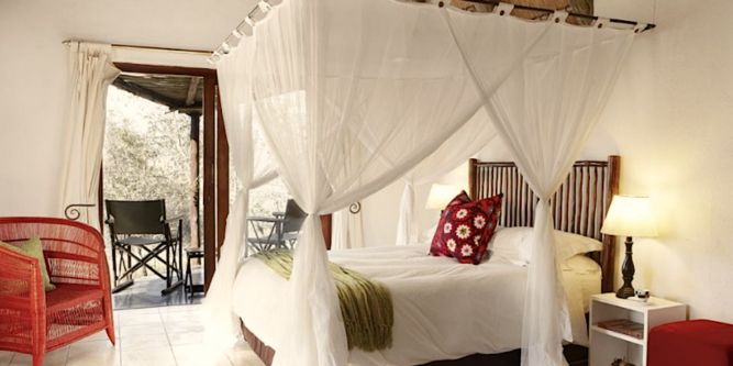 Special discounted Rates offered at Cheetah Plains Game Lodge, Sabi Sand Private Game Reserve. A luxurious family lodge and comprises of eight thatched chalets all with en-suite rooms, viewing decks and a swimming pool.