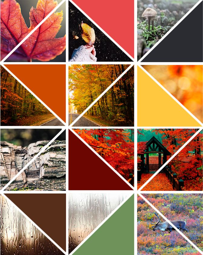 Hello autumn by Little Haggi #littlehaggi #inspiration #moodboard #autumn #fall #photography #colours #palettes