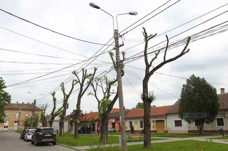 Timisoara nu va scapa prea curand de cablurile agatate de stalpi: primaria spune ca nu sunt bani!