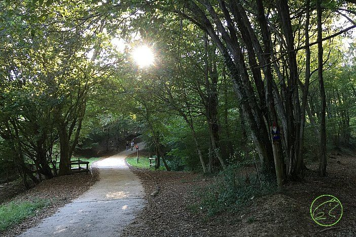 Cerchi una gita in Lombardia vicino a Milano? Vai al Parco di Montevecchia e Valle del Curone: dove mangiare, fare la spesa, stare nella natura