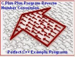 term paper on marketing plan