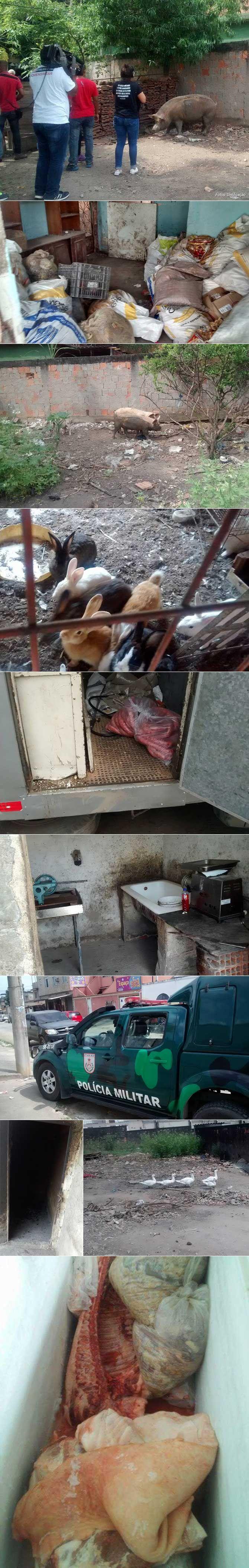 A Polícia Militar, por meio de seu departamento de meio ambiente, fechou na manhã desta quinta-feira (17) um matadouro clandestino em São João de Mereti, na baixada fluminense. O presidente da Comissão de Proteção e Defesa dos Animais (CPDA) da OAB-RJ, Reynaldo Velloso, acompanhou a ação. Após uma denúncia anônima, as autoridades chegaram ao local …