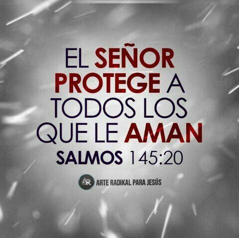 El protege