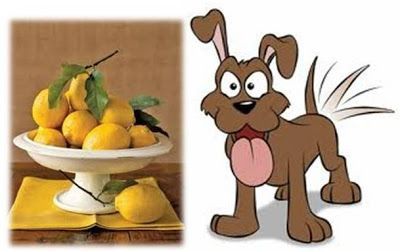 Lemon – A Safe, Natural Misquito Repellent for Dogs