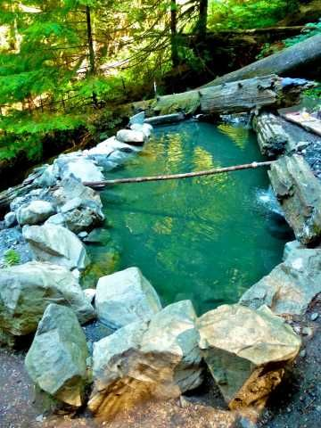 Olympic hot springs, one of several natural hot springs in this area of the Olympic National Forest.  Worth the drive and hike!