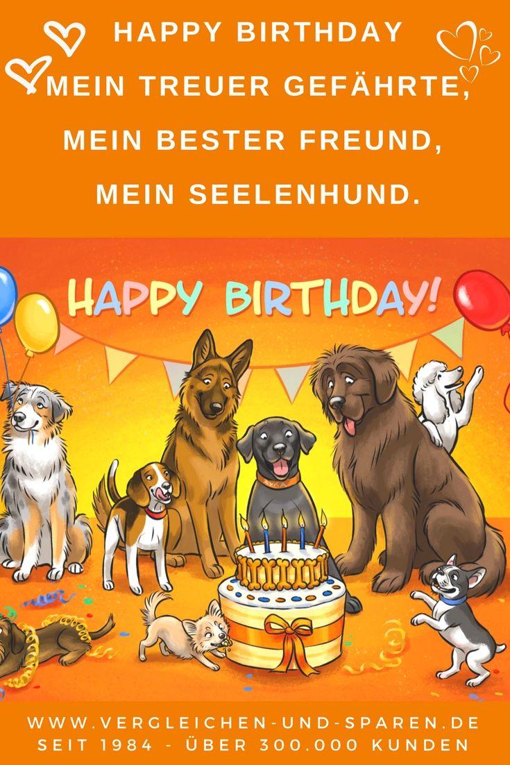 Happy Birthday Mein Treuer Gefahrte Mein Bester Freund Meine