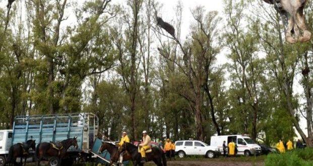 La búsqueda del niño perdido en Villa Gobernador Gálvez apunta al Saladillo – Panorama Rosario