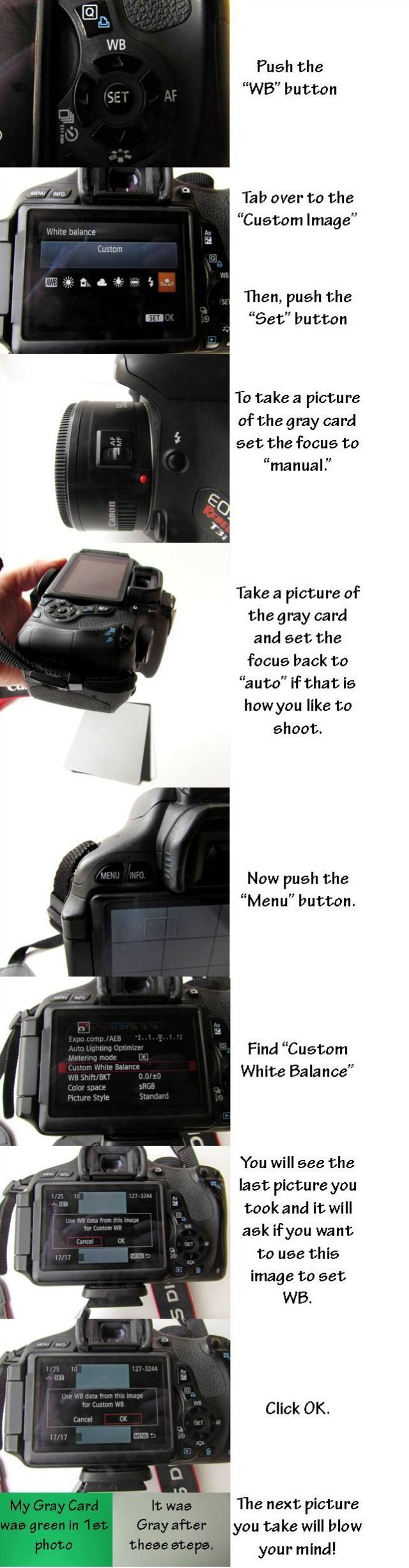 Step by step on how to adjust White Balance - by The Bearfoot Baker