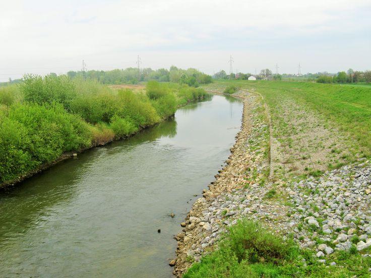 Rzeka Wisłoka