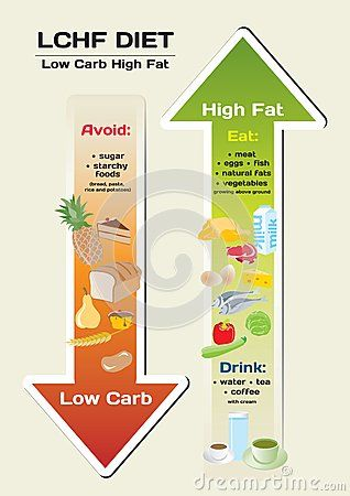 Diet Low Carb High Fat infographic by Elizabetalexa, via Dreamstime