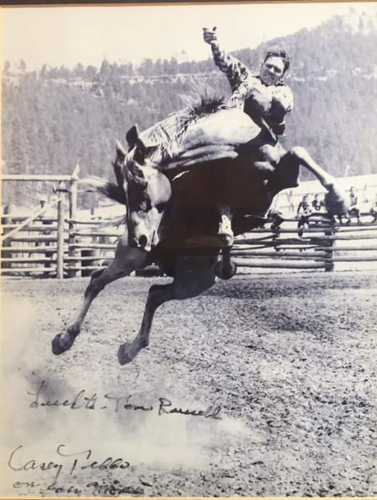 Casey Duane Tibbs (March 5, 1929–January 28, 1990) was an American cowboy, rodeo performer, and actor. In 1979, he was inducted into the ProRodeo Hall of Fame.