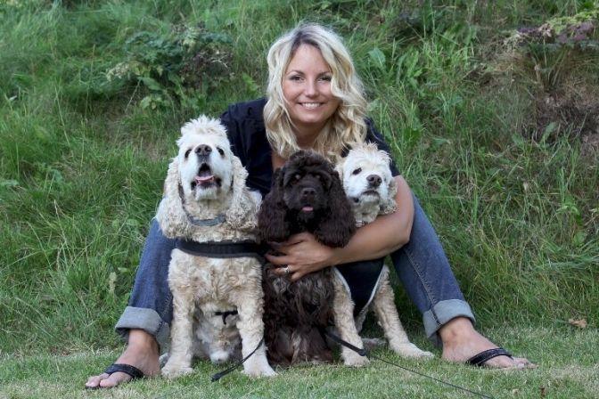 KÆLEDYR: Hunde og katte, der har været med i bilen på sommerferie, kan have oplevet at blive køresyge. Samtidig kan det være både ubehageligt og stressende for de firbenede, at sidde med i bilen på vej til sommerhuset eller sydpå. #hund #kat #kæledyr