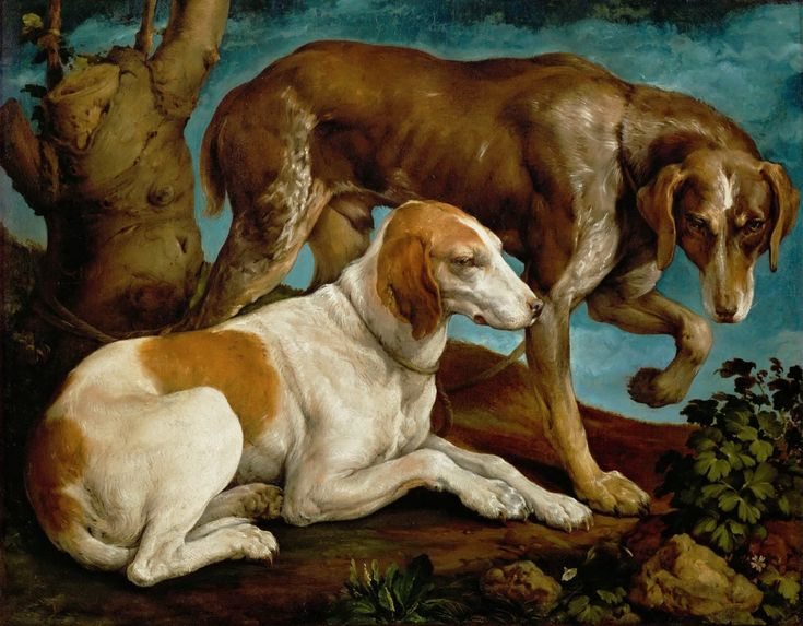 Бассано, Якопо - Две охотничьи собаки, привязанные ко пню