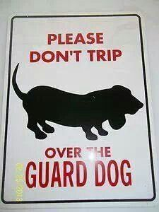 This would be the case at our house!