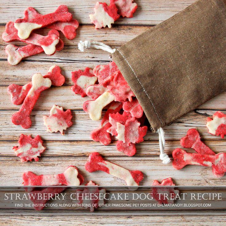 DIY Dog Treat Recipe   Strawberry cream cheese marbled dog treats.