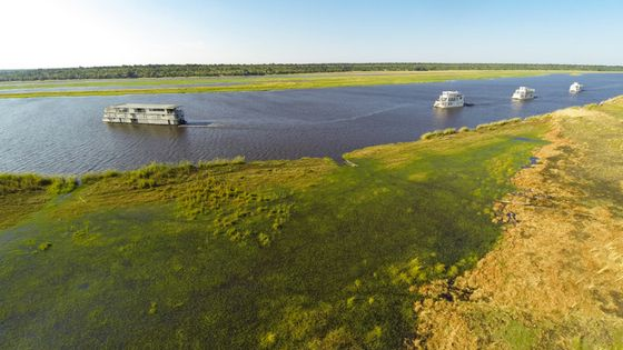 A sailing guide for your Chobe River adventure