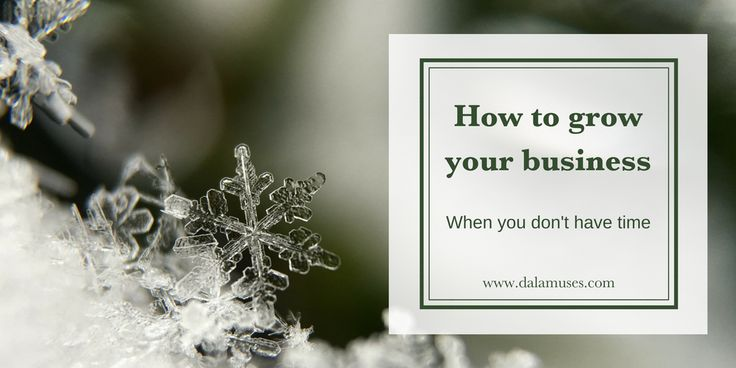 Business growth when you don't have time - Dala Muses