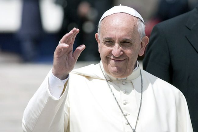 Pope Francis has become an outspoken advocate on environmental issues. giulio napolitano / Shutterstock.com