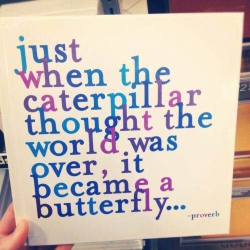 :]Thoughts, Life Motto, Remember This, Proverbs, Inspiration, Butterflies, Beautiful, Hungry Caterpillar, Favorite Quotes