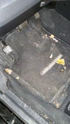 Mit dem Bosch Athlet 25.2 V Akkusauger mal eben schnell das Auto absaugen. Status vorher  http://www.mihela-testfamily.de  #Bosch #Staubsauger #Haushalt #Akkusauger #BoschAthlet