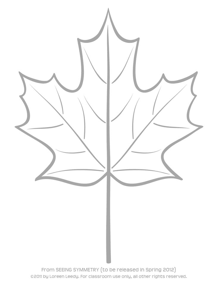 awesome Red Maple Leaf Outline Picturealbafenollar