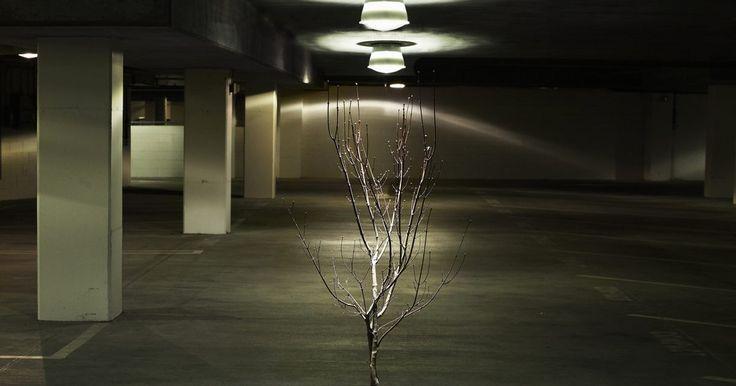 Cómo hacer árboles artificiales de interior. Los árboles de interior le dan un toque sereno a cualquier habitación. Los artificiales tienen ventajas adicionales, nunca tendrás que preocuparte por el mantenimiento de la planta y nunca tendrás que lidiar con las plagas. Crear un árbol artificial de interior también te da la libertad de exhibir cualquier tipo de árbol que elijas. Estos árboles ...